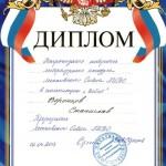 Диплом - Воронцов 2013